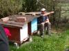 Bienen Seminar - 4
